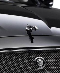 Jaguar XJ 351